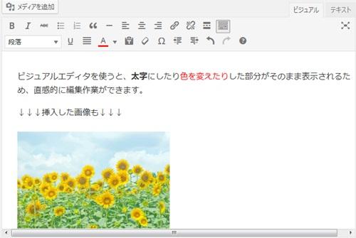 ビジュアルエディタで文字サイズや色を変更・画像を挿入
